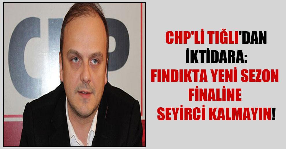 CHP'li Tığlı'dan iktidara: Fındıkta yeni sezon finaline seyirci kalmayın!