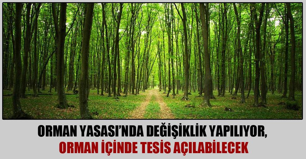 Orman Yasası'nda değişiklik yapılıyor, orman içinde tesis açılabilecek