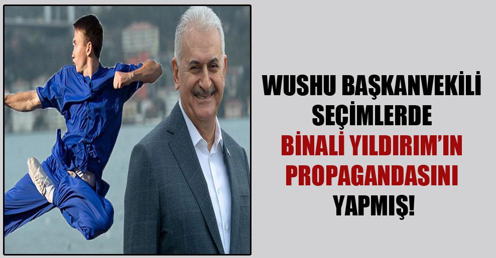 Wushu Başkanvekili seçimlerde Binali Yıldırım'ın propagandasını yapmış!