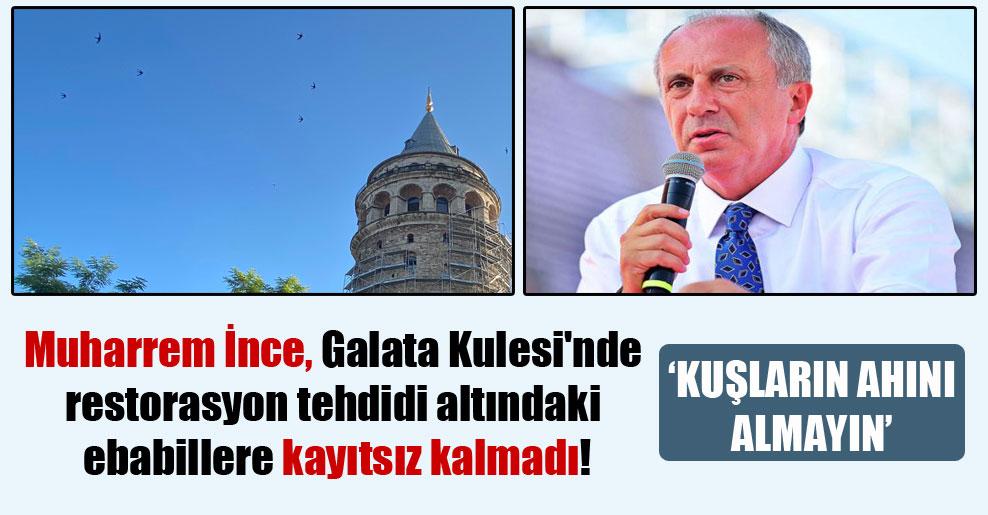 Muharrem İnce, Galata Kulesi'nde restorasyon tehdidi altındaki ebabillere kayıtsız kalmadı!