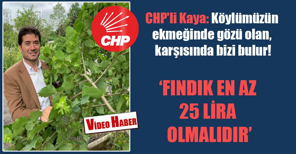 CHP'li Kaya: Köylümüzün ekmeğinde gözü olan, karşısında bizi bulur! 'Fındık en az 25 Lira olmalıdır'