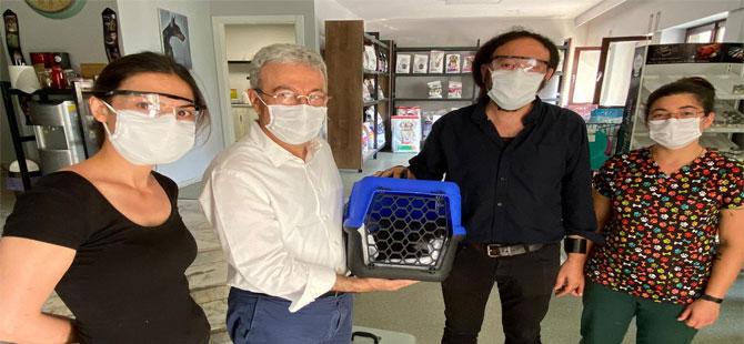 CHP'li Antmen, vekil aracını hayvan ambulansı yaptı!