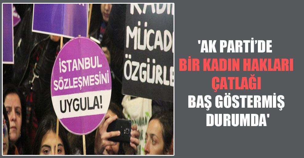 'AK Parti'de bir kadın hakları çatlağı baş göstermiş durumda'