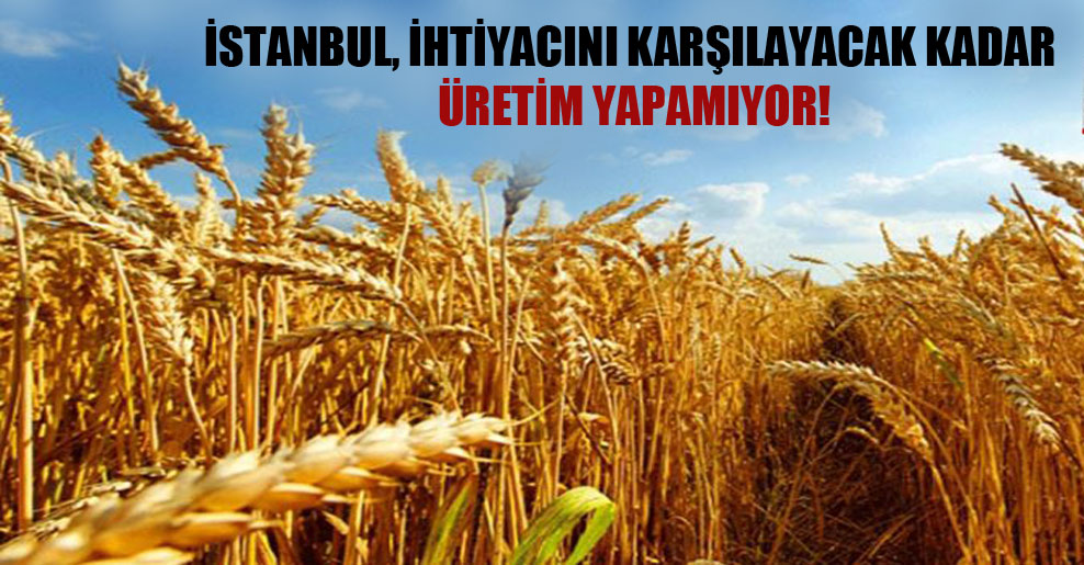 İstanbul, ihtiyacını karşılayacak kadar üretim yapamıyor!