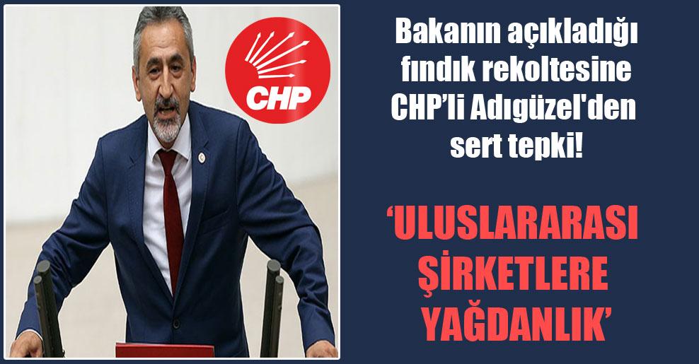 Bakanın açıkladığı fındık rekoltesine CHP'li Adıgüzel'den sert tepki!