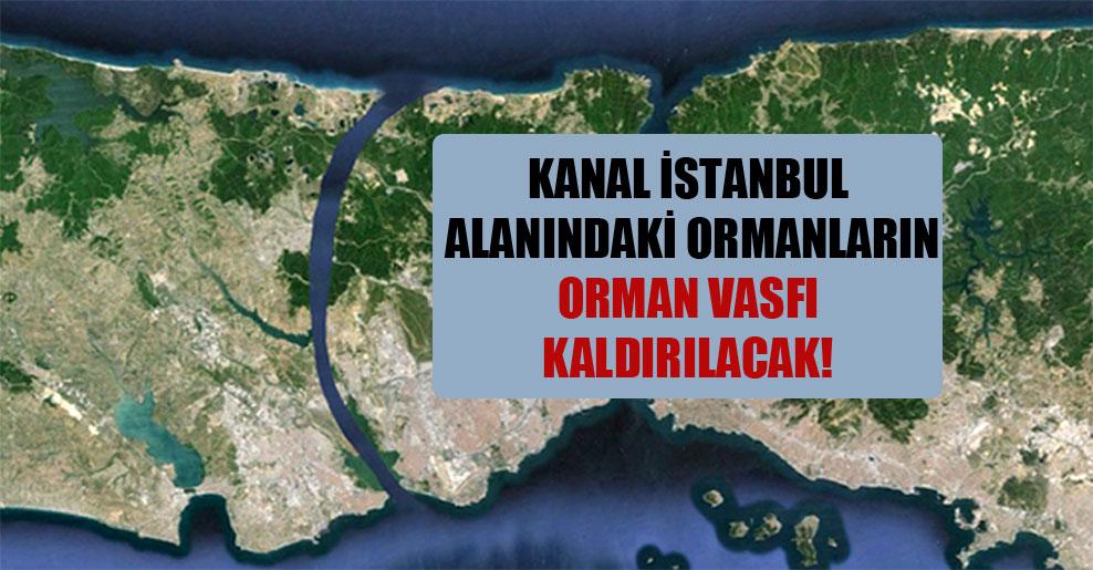 Kanal İstanbul alanındaki ormanların orman vasfı kaldırılacak!