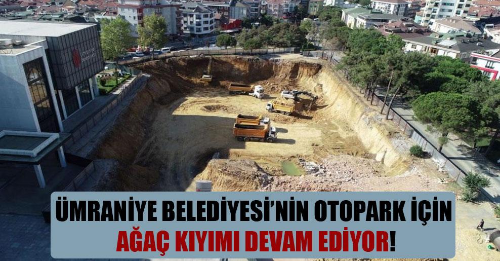 Ümraniye Belediyesi'nin otopark için ağaç kıyımı devam ediyor!