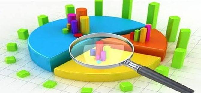 Berat Albayrak'a ekonomi konusunda güven yüzde 4,9