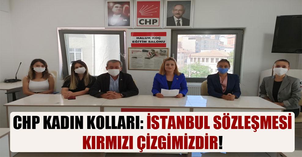 CHP Kadın Kolları: İstanbul Sözleşmesi kırmızı çizgimizdir!