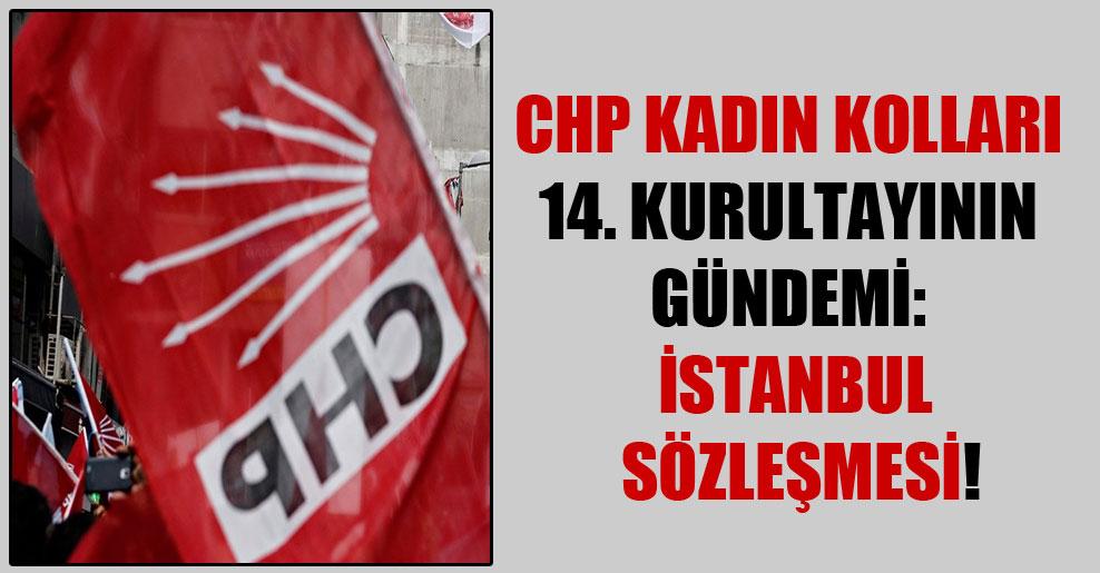 CHP Kadın Kolları 14. kurultayının gündemi: İstanbul Sözleşmesi!