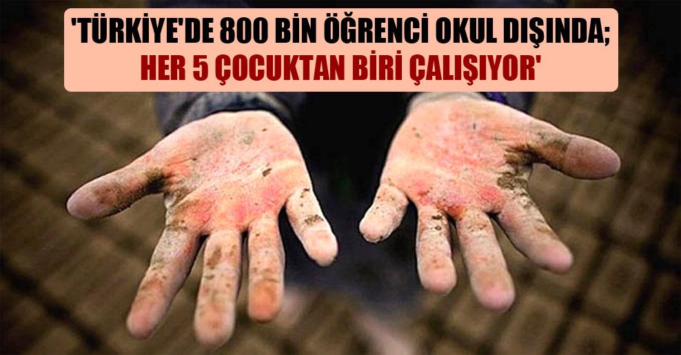 'Türkiye'de 800 bin öğrenci okul dışında; her 5 çocuktan biri çalışıyor'