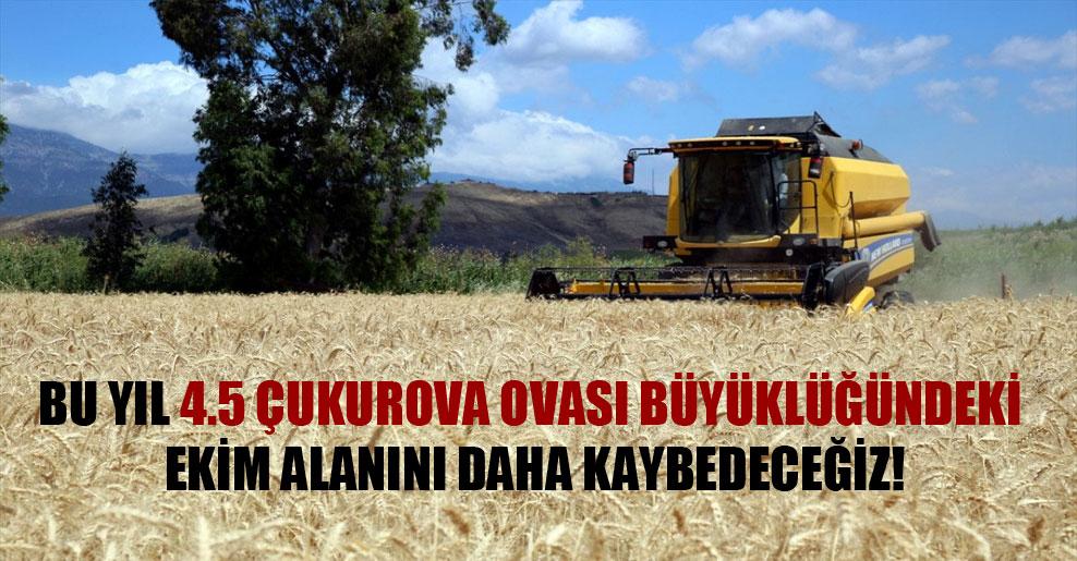 Bu yıl 4.5 Çukurova Ovası büyüklüğündeki ekim alanını daha kaybedeceğiz!