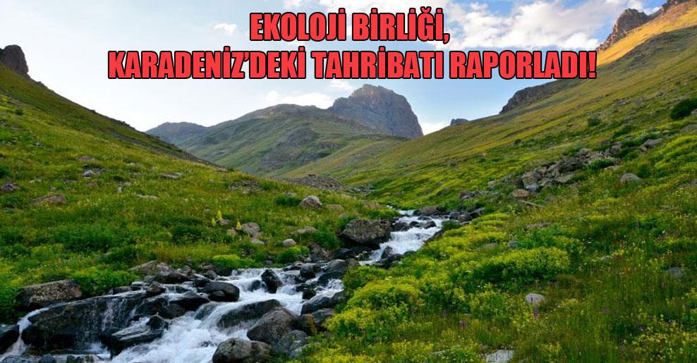 Ekoloji Birliği, Karadeniz'deki tahribatı raporladı!