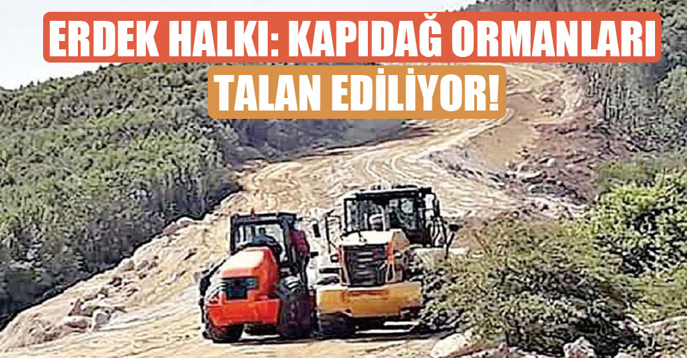 Erdek halkı: Kapıdağ ormanları talan ediliyor!