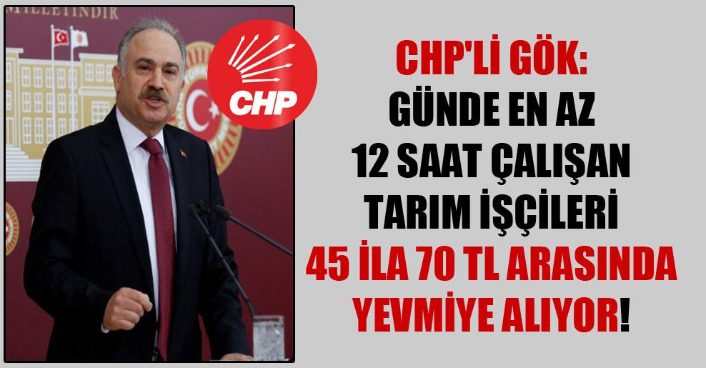 CHP'li Gök: Günde en az 12 saat çalışan tarım işçileri 45 ila 70 TL arasında yevmiye alıyor!