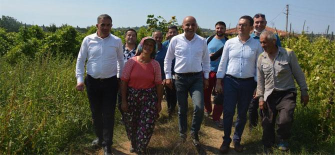 CHP'li Polat: Üretim her sene düşüyor, sıkıntılar kooperatif ile çözülecek!