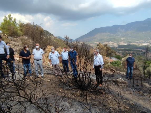 Adrasan Orman Yangını 3 20.09.2020