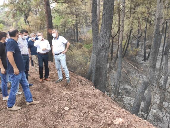 Adrasan Orman Yangını 4 20.09.2020