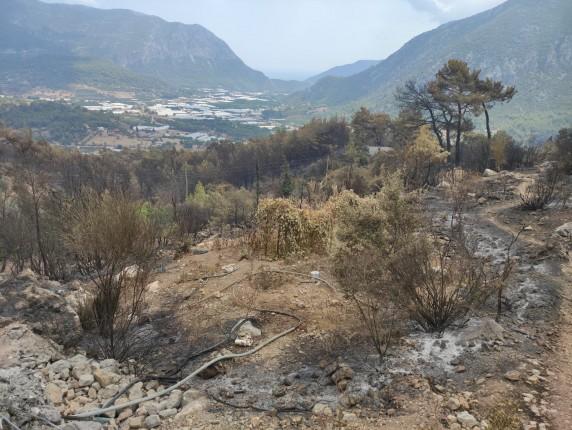 Adrasan Orman Yangını 8 20.09.2020