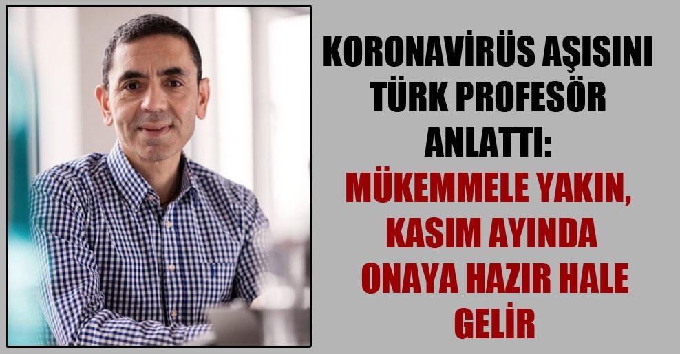 Koronavirüs aşısını Türk profesör anlattı: Mükemmele yakın, kasım ayında onaya hazır hale gelir