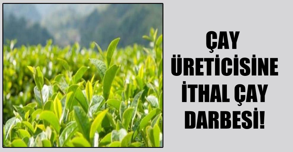 Çay üreticisine ithal çay darbesi!