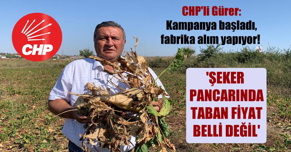 CHP'li Gürer: Kampanya başladı, fabrika alım yapıyor! 'Şeker pancarında taban fiyat belli değil'