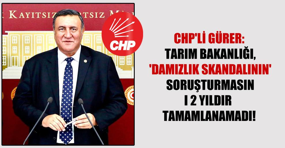 CHP'li Gürer: Tarım Bakanlığı, 'Damızlık Skandalının' soruşturmasını 2 yıldır tamamlanamadı!