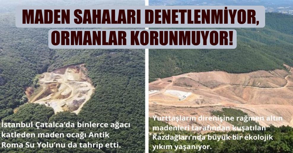 Maden sahaları denetlenmiyor, ormanlar korunmuyor!