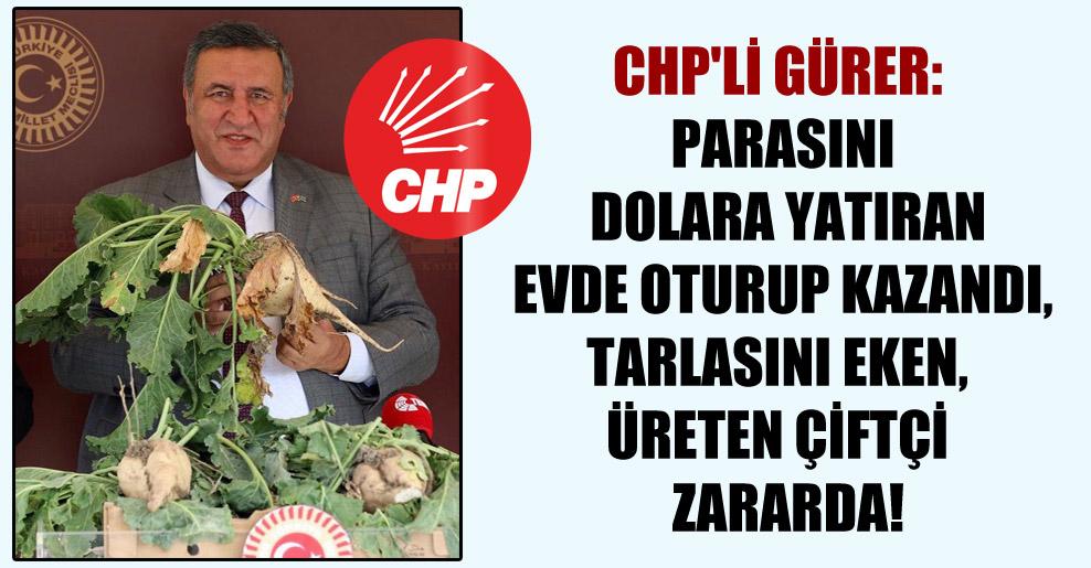 CHP'li Gürer: Parasını dolara yatıran evde oturup kazandı, tarlasını eken, üreten çiftçi  zararda!