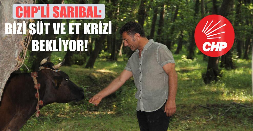 CHP'li Sarıbal: Bizi süt ve et krizi bekliyor!