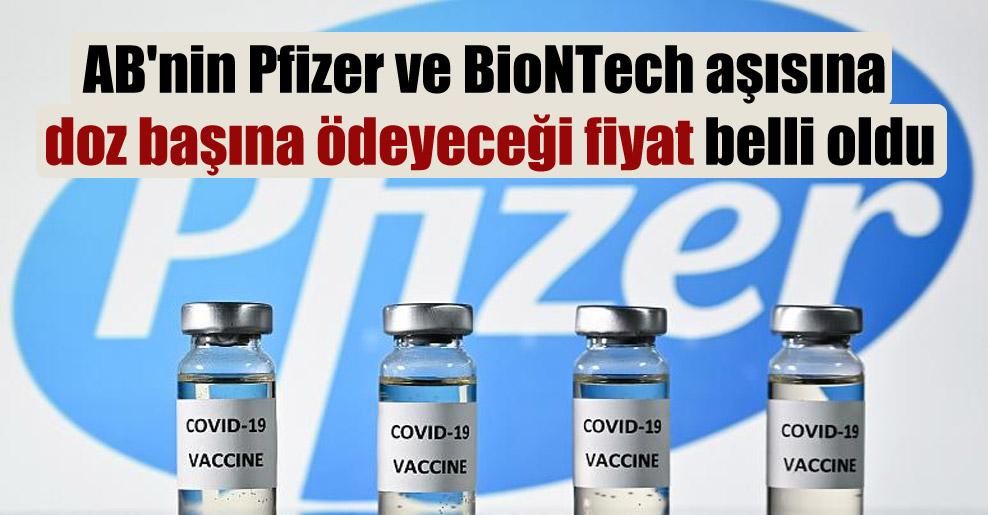 AB'nin Pfizer ve BioNTech aşısına doz başına ödeyeceği fiyat belli oldu