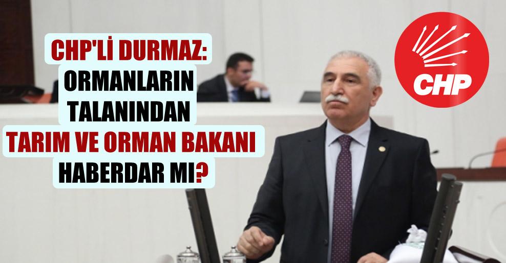 CHP'li Durmaz: Ormanların talanından Tarım ve Orman Bakanı haberdar mı?