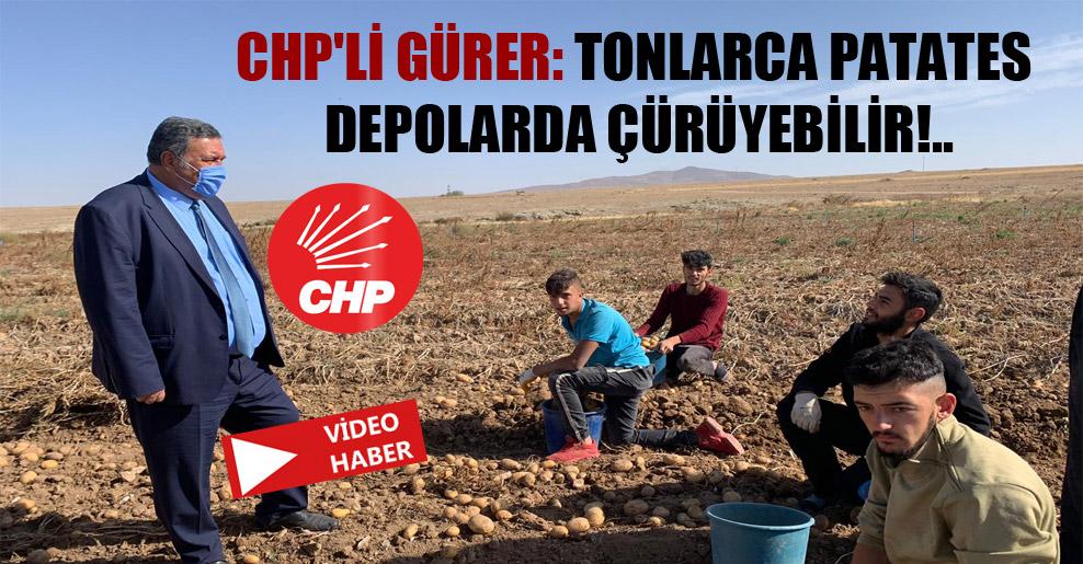 CHP'li Gürer: Tonlarca patates depolarda çürüyebilir!..