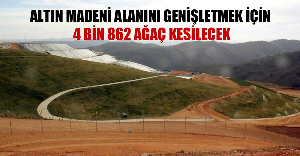 Altın madeni alanını genişletmek için 4 bin 862 ağaç kesilecek