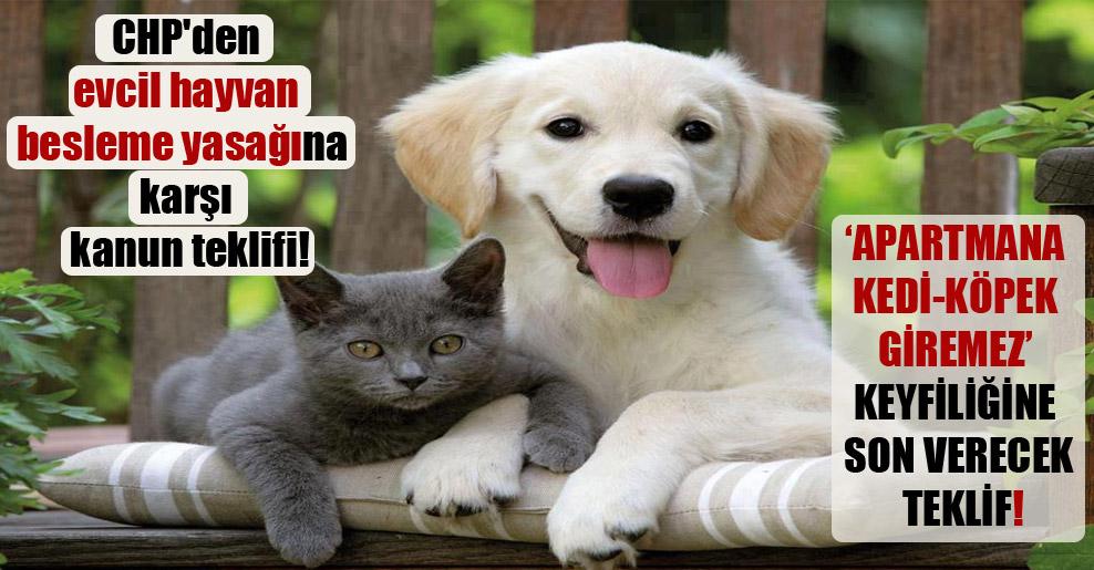 CHP'den evcil hayvan besleme yasağına karşı kanun teklifi!
