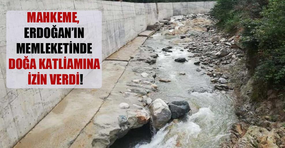 Mahkeme, Erdoğan'ın memleketinde doğa katliamına izin verdi!