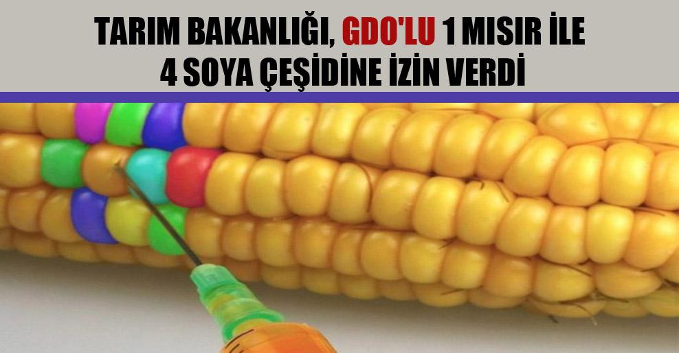 Tarım Bakanlığı, GDO'lu 1 mısır ile 4 soya çeşidine izin verdi