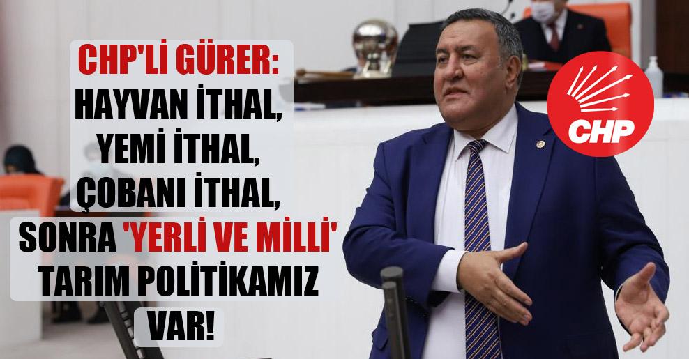 CHP'li Gürer: Hayvan ithal, yemi ithal, çobanı ithal, sonra 'yerli ve milli' tarım politikamız var!