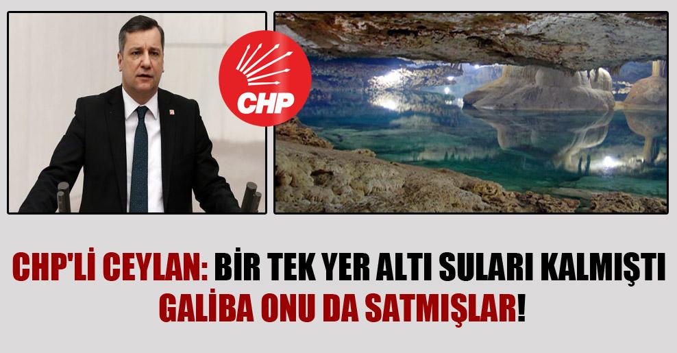 CHP'li Ceylan: Bir tek yer altı suları kalmıştı galiba onu da satmışlar!