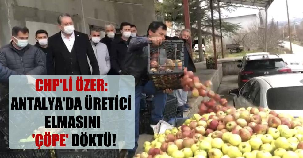 CHP'li Özer: Antalya'da üretici elmasını 'çöpe' döktü!