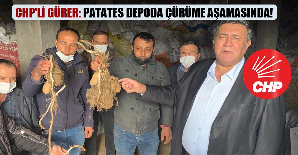 CHP'li Gürer: Patates depoda çürüme aşamasında!