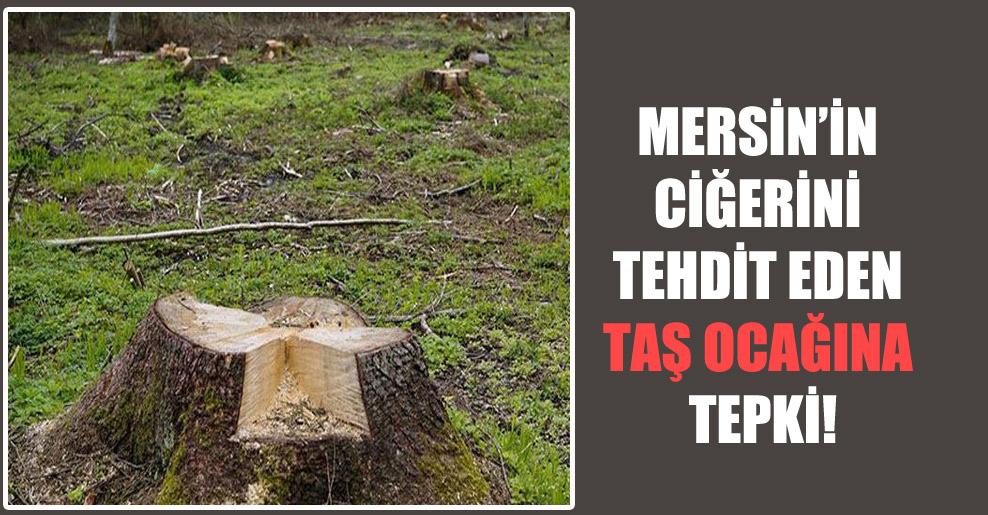 Mersin'in ciğerini tehdit eden taş ocağına tepki!