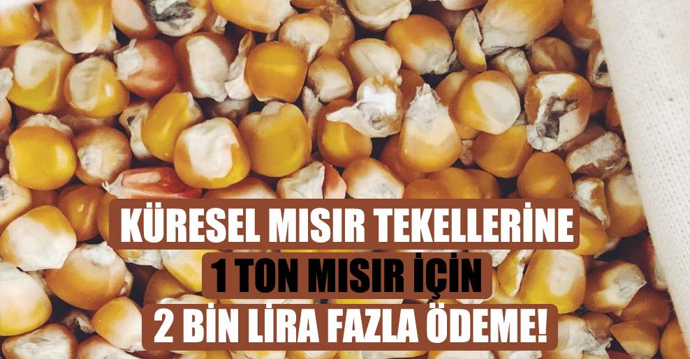 Küresel mısır tekellerine 1 ton mısır için 2 bin lira fazla ödeme!