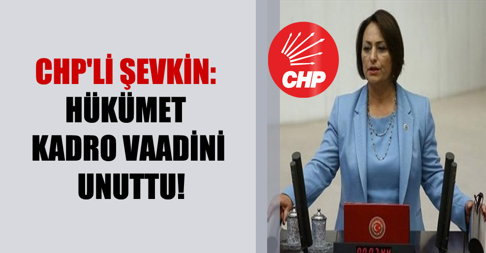 CHP'li Şevkin: Hükümet kadro vaadini unuttu!