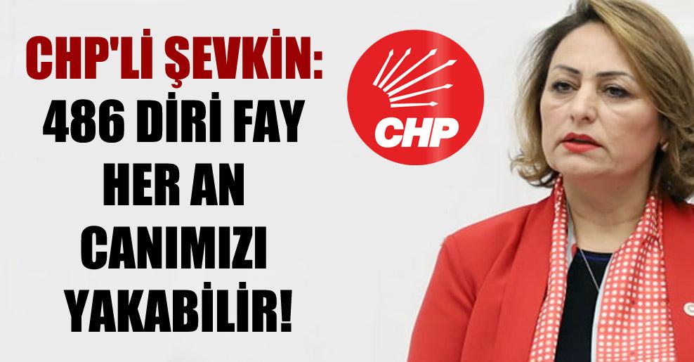 CHP'li Şevkin: 486 diri fay her an canımızı yakabilir!