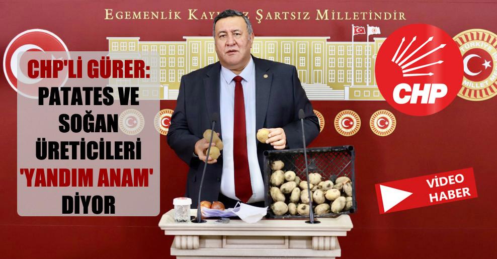 CHP'li Gürer: Patates ve soğan üreticileri 'Yandım anam' diyor!