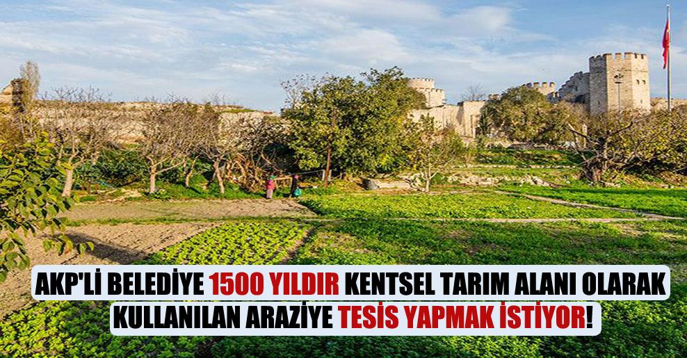 AKP'li Belediye 1500 yıldır kentsel tarım alanı olarak kullanılan araziye tesis yapmak istiyor!