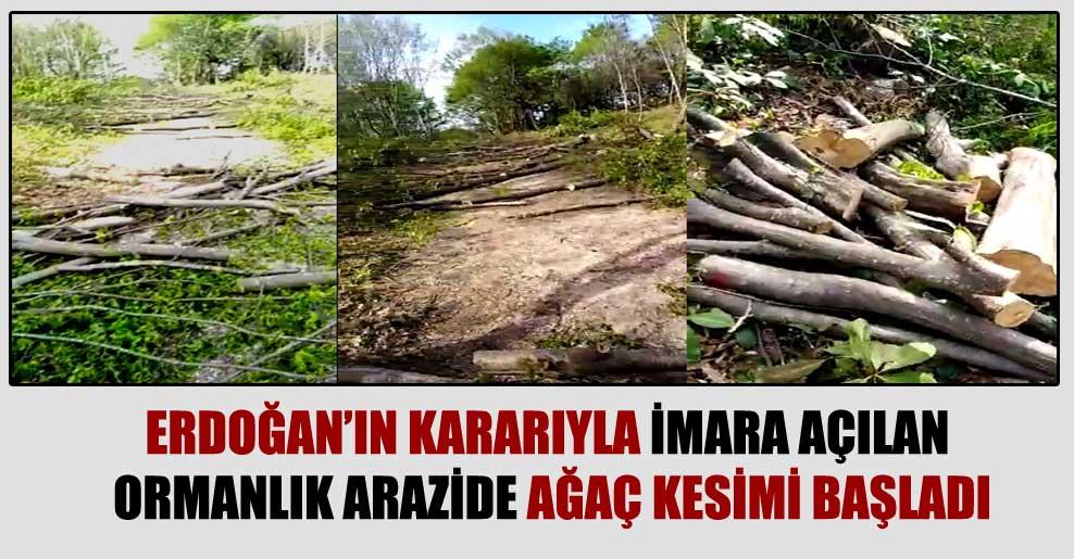 Erdoğan'ın kararıyla imara açılan ormanlık arazide ağaç kesimi başladı