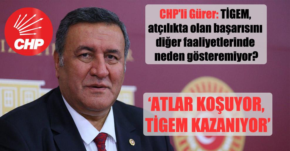 CHP'li Gürer: TİGEM, atçılıkta olan başarısını diğer faaliyetlerinde neden gösteremiyor?