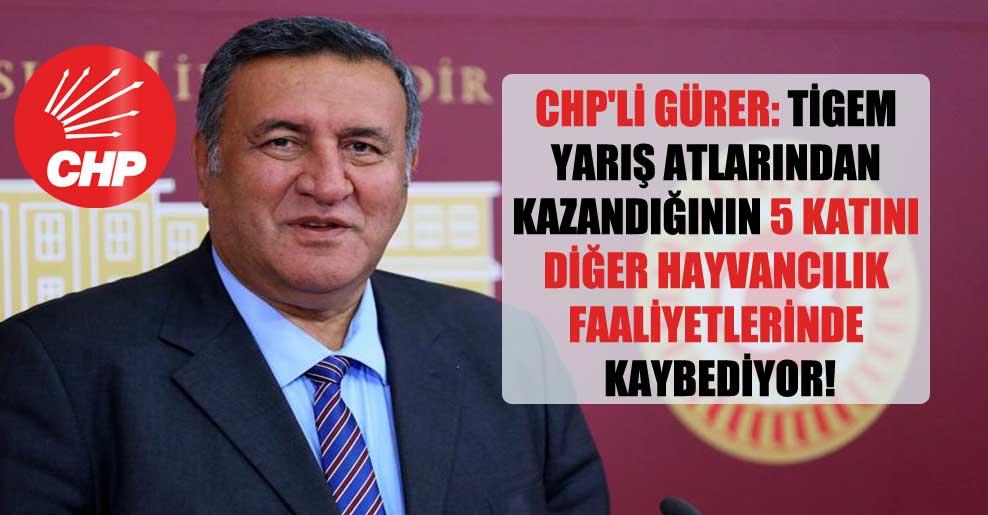 CHP'li Gürer: TİGEM yarış atlarından kazandığının 5 katını diğer hayvancılık faaliyetlerinde kaybediyor!